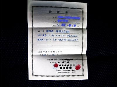2012_0307_101114cimg0983_3